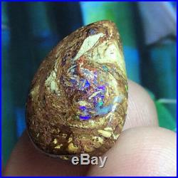 12.85ct Boulder Opal Petrified WOOD/VEGETATION Fossil FIERY Gem Flashes Video