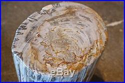16 H x 10 x 8 petrified wood stool black gray white brown full polish 366R