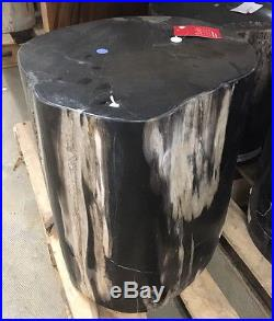 18 H petrified wood stool fully polished white black accent spectacular quality