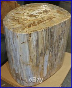 19 W amazing petrified wood stool full polish white yellow spectacular cut