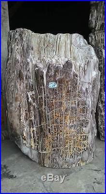 20 Ton Natural Indonesia Hard Tropical Petrified Wood Rough Sculpture For Garden