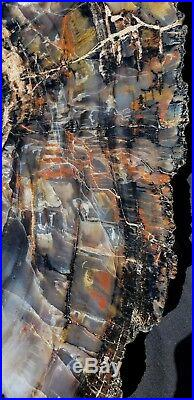23 Gem Quality Fossil Petrified Wood Round Arizona Chinle Red Pink #a1
