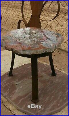 26 Gem Quality Fossil Petrified Wood Round Table Arizona Chinle Red Pink