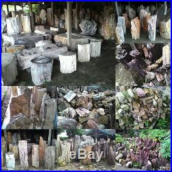 300 Ton Clearance Sale Indonesia Petrified Wood Rough Sculpture Landscaping