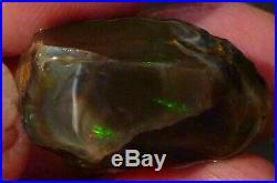 37.7 carats Virgin Valley Black Precious Opal Petrified Wood Nevada 26.5mm