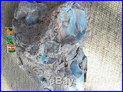 42lbs 33 x 33 x 36 Arizona Fossilized Rainbow Wood