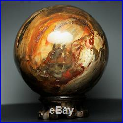 4.2 4.2lb NATURAL PETRIFIED WOOD FOSSIL SPHERE BALL withRoseWood Stand Madagascar
