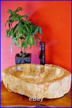 50cm Wash basin petrified wood Unique Natural stone Fossil Stone sinks