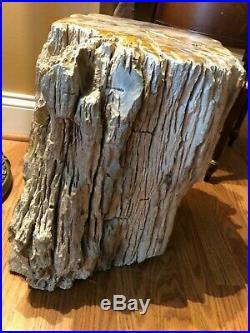 AMAZING Petrified Tree Stump Large 15 Tall x 14. Across Museum Quality