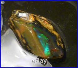 A+ Virgin Valley Precious Black Opal Petrified Wood Log Nevada 59.4 carats