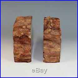 Arizona Rainbow Petrified Wood Bookends Polished 4.5 Tall Felted Handmade