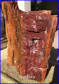 Arizona Rainbow Petrified Wood Natural Bark Fossil Rare Rough Solid Slab 19 Lbs