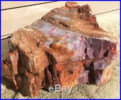 Arizona Rainbow Petrified Wood Natural Fossil Rough Solid Lapidary Slab 21.5 Lbs