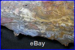 BARGAIN Museum Quality Hubbard Basin round! TOP SHELF! AAA