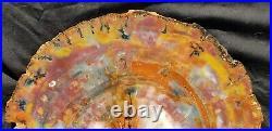 Beautiful 13 Inch Fossil Petrified Wood Red Rainbow Round Arizona