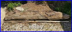 Beautiful Petrified Wood Log six feet long and extremely heavy