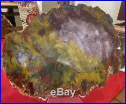 Beautiful Purple, Red, Yellow, and White 13 Arizona Petrified Wood Round