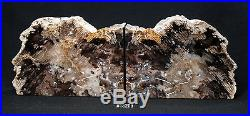 Exquisite Petrified Wood Bookends 14 1/4 wide, 10 high, 1 7/8 thick, 20 lbs
