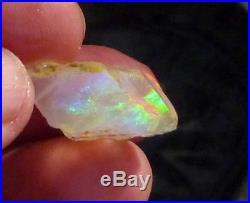 FIRE! 17.8cts Virgin Valley Precious Opal Petrified Wood Nevada 21mm