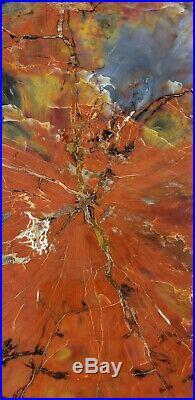 Fossil Petrified Wood Red Rainbow Round Arizona Chinle