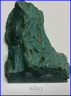 Green Petrified Wood Gallatin Valley MONTANA 1.87 lbs