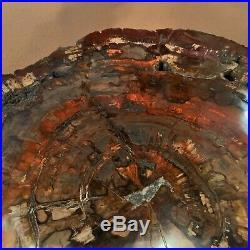 HUGE RAINBOW PETRIFIED WOOD POLISHED (Both Sides) ROUND SLAB, BEAUTIFUL PW75