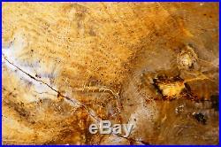 Incrdible Stinking Water Golden Oak round! TOP SHELF