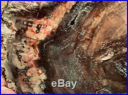 LARGE RAINBOW PETRIFIED WOOD POLISHED (Both Sides) ROUND SLAB PW 46