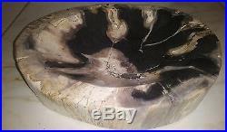 New Black and biege Petrified WOOD Bow 8.5x 10.3/8