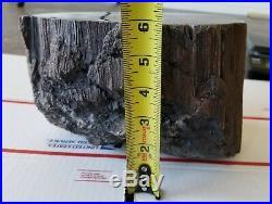 Over 23 lb Utah Petrified wood. POLISHED. #W-21