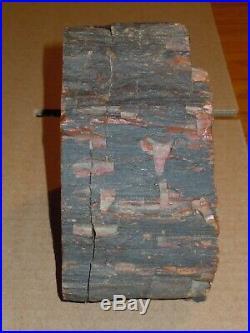 Petrified Forest National Park 3+lb Petrified Wood Cut & Polished Single Bookend