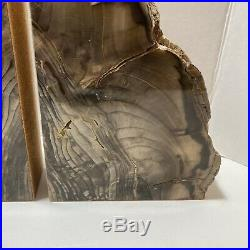 Petrified Wood Bookends Large Cedar from Ginkgo Petrified Forest Pair 9 x 6 x 2
