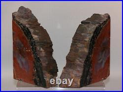 Petrified Wood Bookends With Bark Jasper