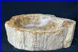 Petrified Wood Fossil Stone Vessel sink