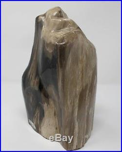 Petrified Wood Fossilised Piece Polished Indonesia 29x16x14 cms 6.7 kilos fossil
