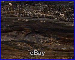Petrified Wood Log Large Appx 66 Pounds