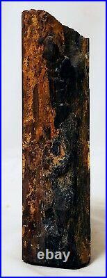 Petrified Wood Specimen Redwood Nevada 4 1/8 in height