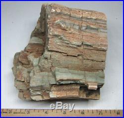 Polished rare green petrified wood from Zimbabwe top chromium log 4+ lbs