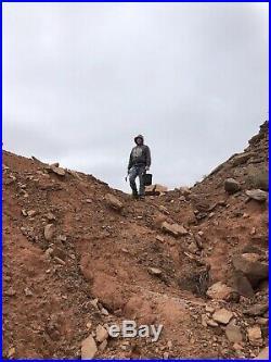 REILLYS ROCKS Highest Quality Polished Arizona Rainbow Petrified Wood, 6.5 Lb