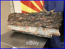 REILLYS ROCKS Top Shelf Arizona Petrified Wood Log Section, 26 Lb