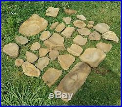 Rare Oklahoma Petrified Wood Lycopod Fossil Artifact Stone Rock Arrowhead
