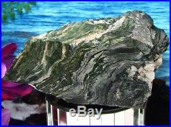 STUNNING PETRIFIED BOG WOODLARSONITEGARY GREEN JASPER Log/Branch 4-1/2 LBS