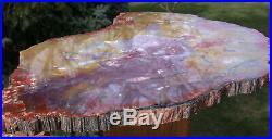 SiS SPECTACULAR PURPLE ORANGE & YELLOW 12 Arizona Petrified Wood Conifer Round