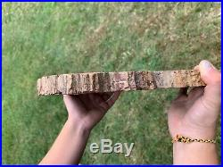 VERY LARGE RAINBOW PETRIFIED WOOD POLISHED (Both Sides) ROUND SLAB PW 68
