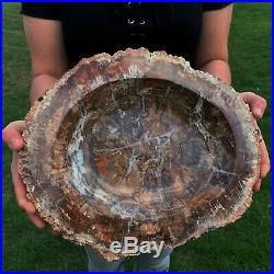 Very Large Rainbow Polished Petrified Wood Bowl Very Nice And Very Rare