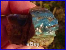 Virgin Valley Precious Black Opal Petrified Wood Nevada 121cts