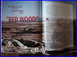 Water Level YELLOW CAT REDWOOD Jurassic Petrified Wood Cast Carnelian BEST