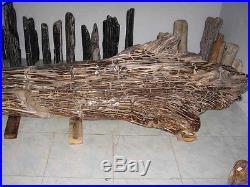 West Java Petrified Wood Tree 7 Meters / 22 ft 11 Long 1932 kg / 4259.331 lbs