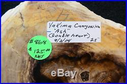 Yakima Canyon ASH! DOUBLE HEARTTop Shelf